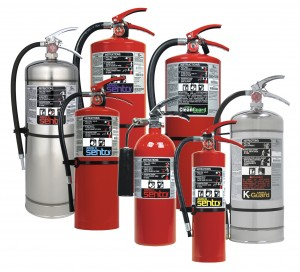 Sentry Cleanguard Clean Fire Extinguishers